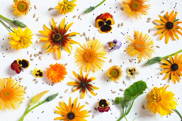 Autumn Festive Floral Background - Stock Photo - Images