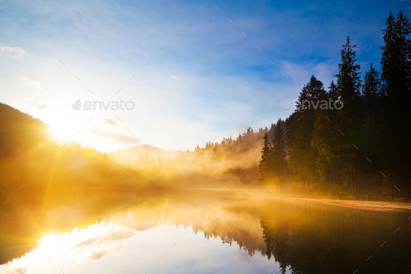 Small lake among mountain forest - Stock Photo - Images