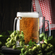 Glasses with czech light beer, dark night bar counter, hop cones and vine, selective focus - PhotoDune Item for Sale