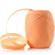 paper ribbon roll isolated - PhotoDune Item for Sale