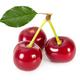 Three ripe cherries isolated on white background. - PhotoDune Item for Sale