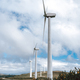 Wind turbines on an open field - PhotoDune Item for Sale