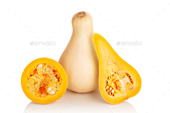 Fresh butternut squash isolated on a white background - Stock Photo - Images