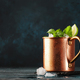 Moscow mule cocktail in copper mug with lime, ginger beer, vodka and mint - PhotoDune Item for Sale