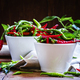 Hot peppers - PhotoDune Item for Sale