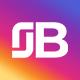 Bindlex Instagram Downloader