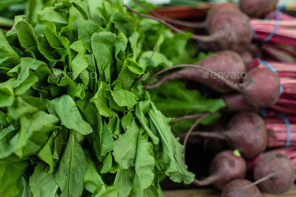 Healthy vegetables in close-up. Close-up of fresh small beetroot and bright green kind of greens - Stock Photo - Images