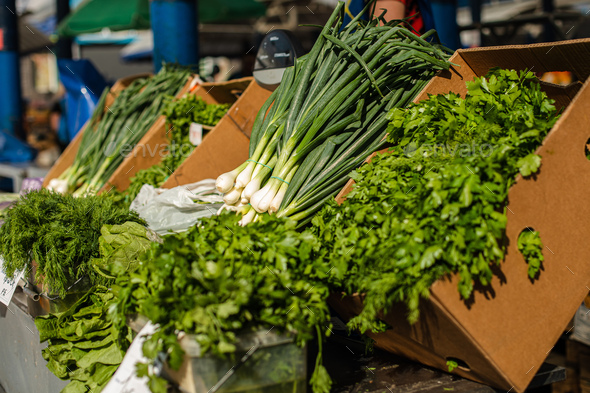 Fresh and raw greens at the market - Stock Photo - Images