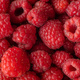 Picked organic raspberries in macro - PhotoDune Item for Sale