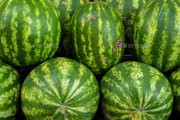 Juicy green watermelons on the counter - Stock Photo - Images