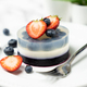 Blueberry fruit agar agar or jelly dessert - PhotoDune Item for Sale