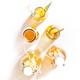 Selection Of Fermented Kombucha Drinks. Homemade probiotic superfood tea, keto diet drink - PhotoDune Item for Sale