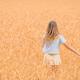 Happy little girl walking in golden fields of wheat - PhotoDune Item for Sale