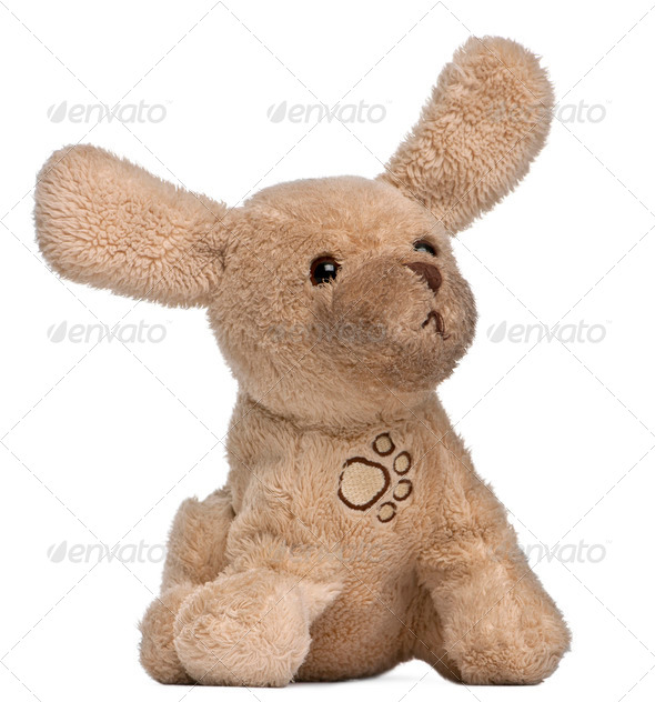 Brown stuffed animal in front of white background - Stock Photo - Images
