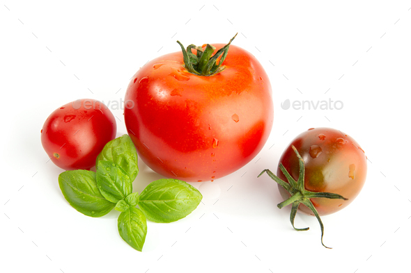 Fresh assorted tomatoes and basil isolated - Stock Photo - Images