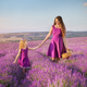 Little girl and mother walking at meadow of lavender. - PhotoDune Item for Sale