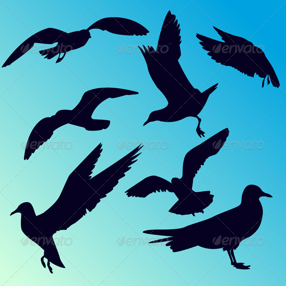 Silhouettes of seagulls - Animals Characters