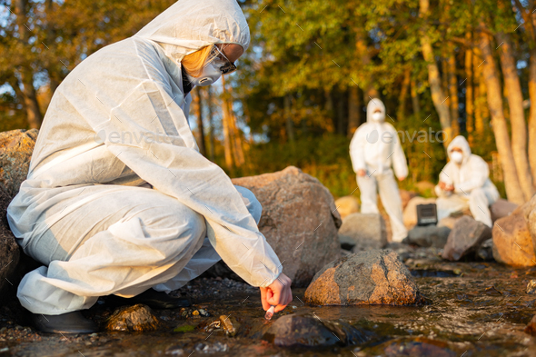 Female scientist collecting water sample from sea - Stock Photo - Images