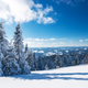 Sunny winter landscape of snowdrifts - PhotoDune Item for Sale