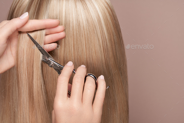 Hairdresser cuts long blonde hair with scissors - Stock Photo - Images