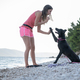 Young woman teaching her black shepherd dog a high five gesture - PhotoDune Item for Sale