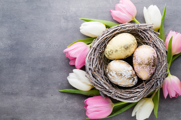 Spring greeting card. Easter eggs in the nest. Spring flowers tulips. - Stock Photo - Images