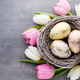 Spring greeting card. Easter eggs in the nest. Spring flowers tulips. - PhotoDune Item for Sale