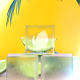 Logo | Summer - VideoHive Item for Sale