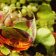 Cognac In Glass, Grapes And Vine, Vintage Wood Background, Selective Focus - PhotoDune Item for Sale