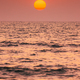 Natural Color Sunset Sunrise Sky Over Sea. Seascape With Shining Setting Sun On Sea Horizon - PhotoDune Item for Sale