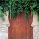 Arab door full of vegetation of an old house - PhotoDune Item for Sale
