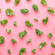 Kale leaves pattern, pink background, flat lay - PhotoDune Item for Sale