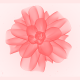 Flower Logo Reveal - VideoHive Item for Sale