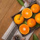 Collections of fresh Tangerines. tangerine slices, juice with leaves. Fruit composition. - PhotoDune Item for Sale