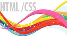 HTML CSS Themes