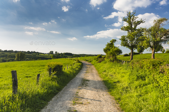 Meadow And Road Near Aachen, Germany - Stock Photo - Images