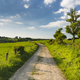Meadow And Road Near Aachen, Germany - PhotoDune Item for Sale