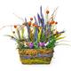 Basket of flower arrangement on white background - PhotoDune Item for Sale