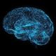 Digital Brain - VideoHive Item for Sale