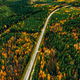 Aerial view of rural road with red car in yellow and orange autumn forest - PhotoDune Item for Sale