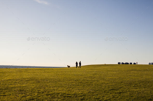 Distant view of couple with dog on grassy landscape against clear sky - Stock Photo - Images
