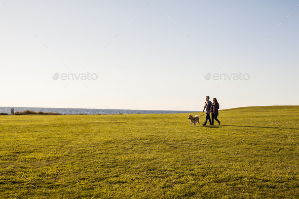 Couple with dog walking on grassy landscape against clear sky - Stock Photo - Images