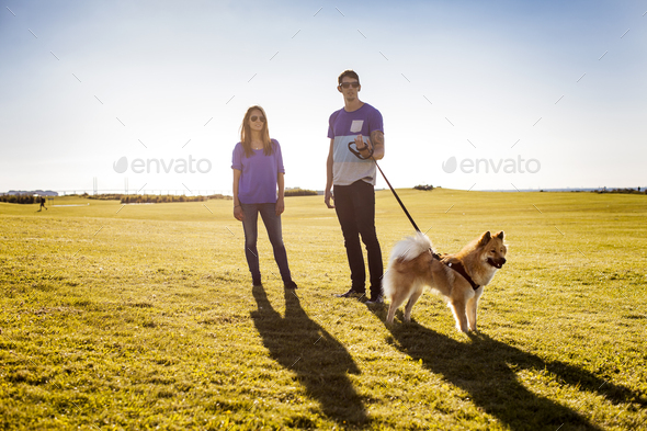 Full length of couple with dog standing at park on sunny day - Stock Photo - Images