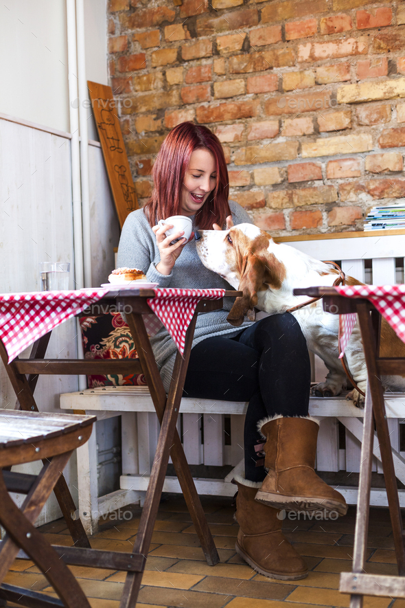 Happy young woman with Basset Hound smelling coffee at cafe table - Stock Photo - Images