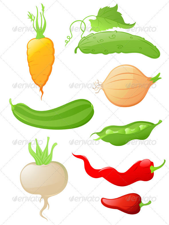Set of Glossy Vegetable Icons - Food Objects