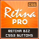 Retina Pro: CSS3 Retina Business Pro 2 Button Set - CodeCanyon Item for Sale