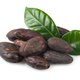 Cacao beans isolated on white. - PhotoDune Item for Sale