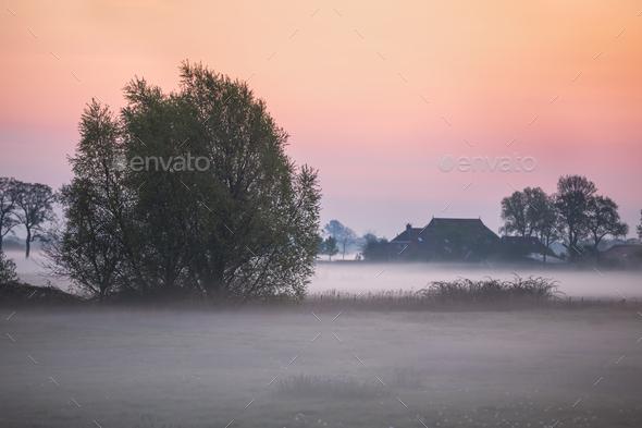 foggy sunrise on farmland - Stock Photo - Images