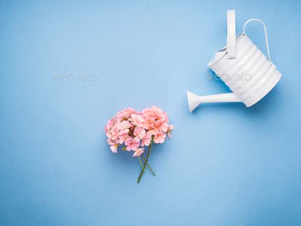 Minimal flat lay with watering concept - Stock Photo - Images