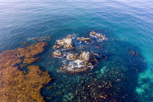 Seal Rock Pinnacle in Laguna Beach - Stock Photo - Images
